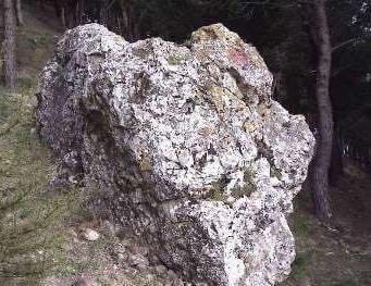 pietra del monte